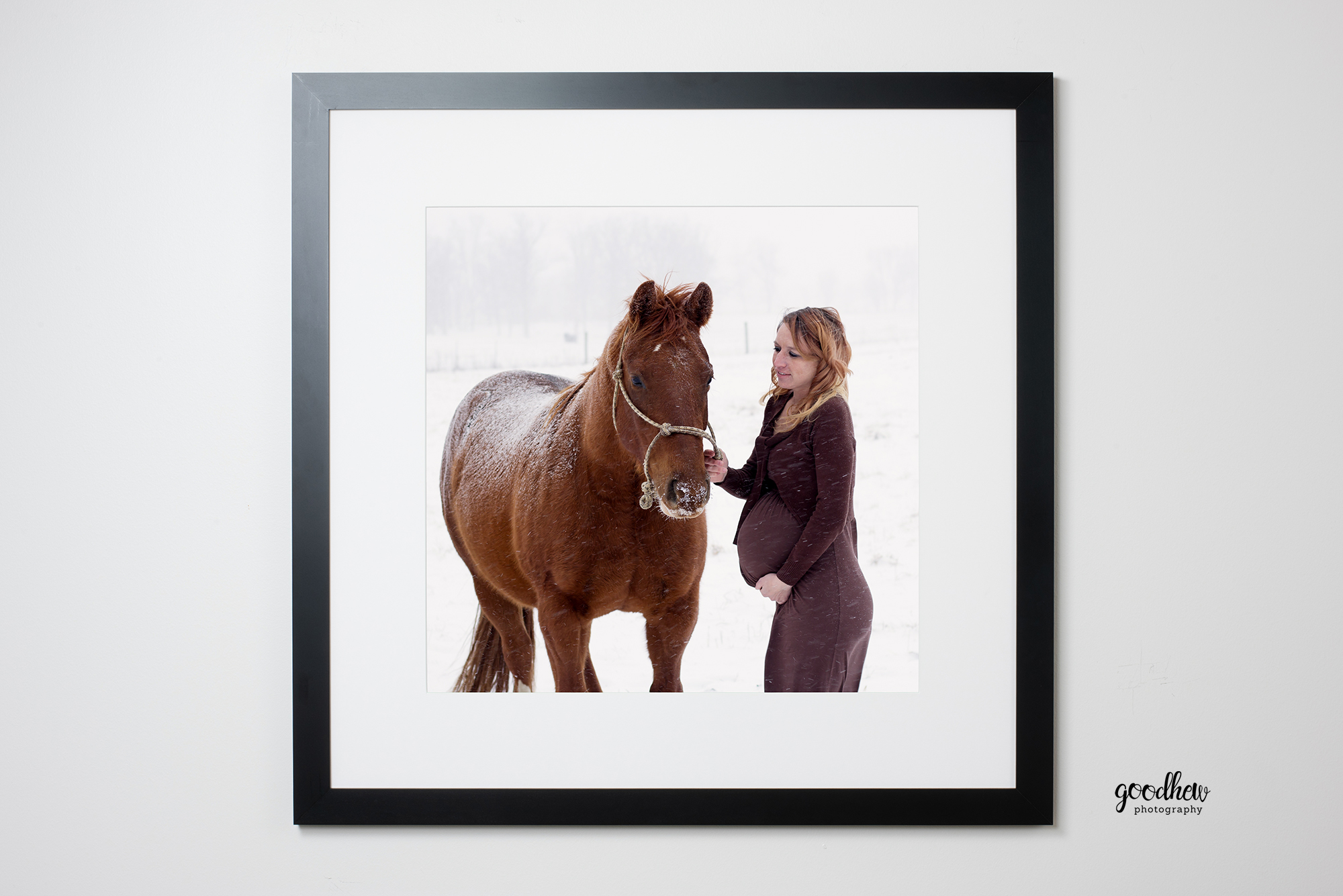Jackson-Mi-Maternity-Portrait-horse-snow