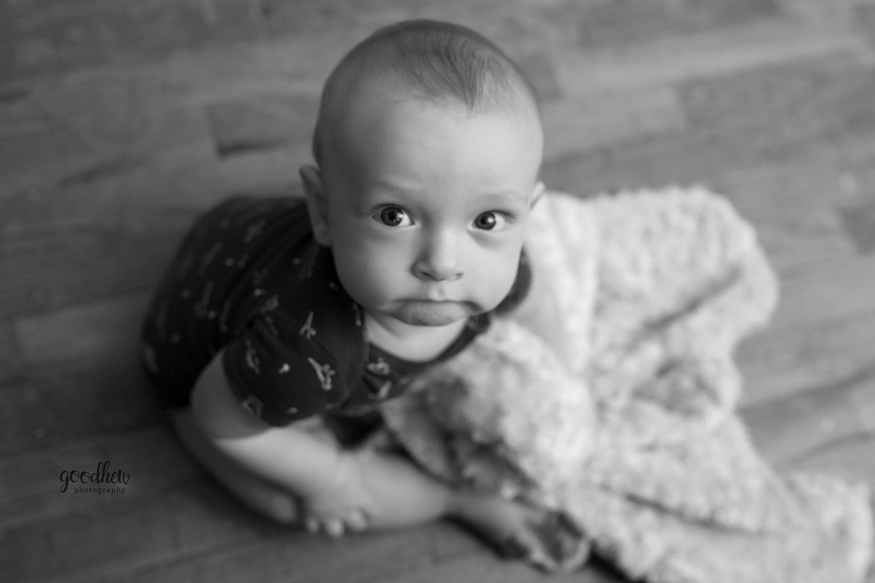 indoor-sitter-portrait-aerial-jackson-mi