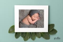 newborn-matted-image-jackson-baby-photographer